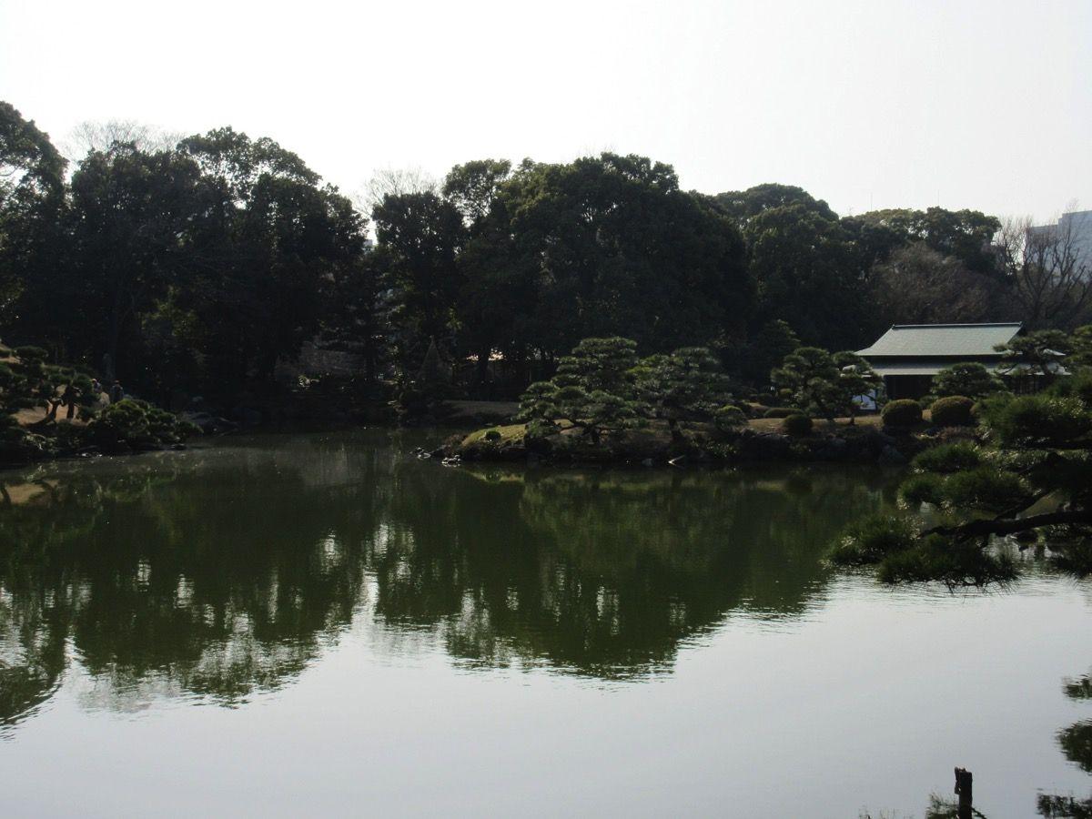 20180224清澄庭園 180308 0022
