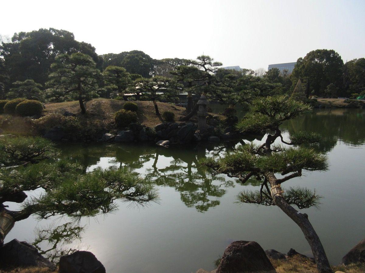 20180224清澄庭園 180308 0021