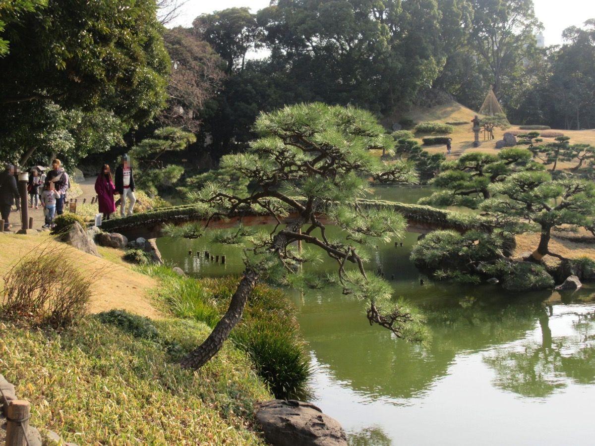 20180224清澄庭園 180308 0023 2